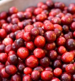 antioxidantes-naturales