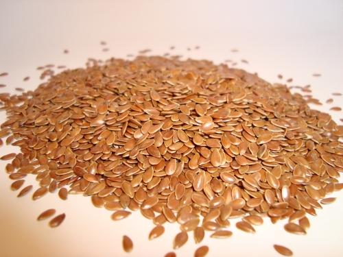 fotos de semillas de lino
