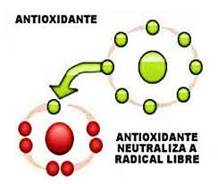antioxidantes vs radicales libres
