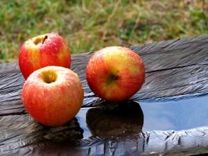 alimentos donde se encuentra acido urico cuanto es lo normal del acido urico alimentacion para evitar la gota