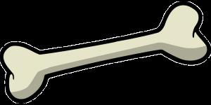fitoterapia para la osteoporosis